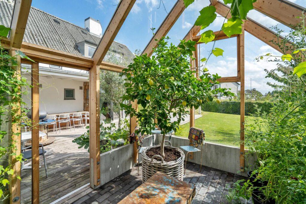 Unikt drivhus. drivhus i træ, drivhus med betonsokkel, råt drivhus